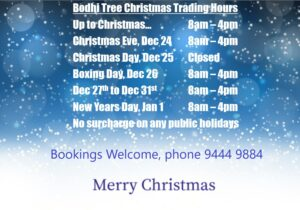 Bodhi Tree Bookstore Cafe Christmas Trading Hours 2020